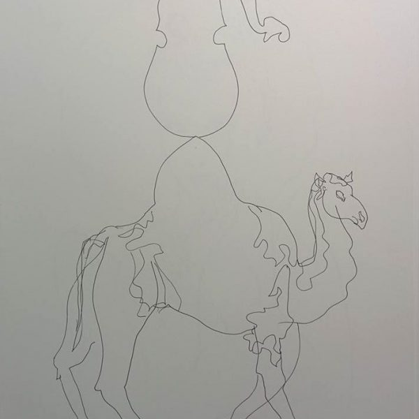The perfect line (Перфектната линия) Art and camel (Изкуство и камила)