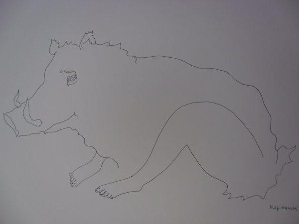 Zodiac Signs Chinese-horoscop-boar (Kитайски хороскоп прасе)