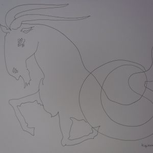 Zodiac Signs Capricorn (Козирог)