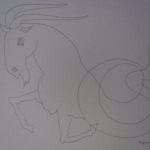 Zodiac Signs Capricorn (Козирог)
